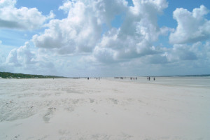 Ameland 2005 - Tag 11